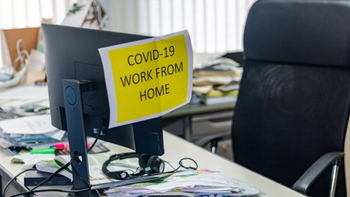 Govt relaxes rules to enable work from home for IT companies till Dec 31