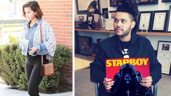 Here's Why The Weeknd's Fans Are Convinced His New Album 'Snowchild' Is About Selena Gomez