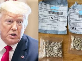 US govt warns people not to plant Chinese unsolicited seeds