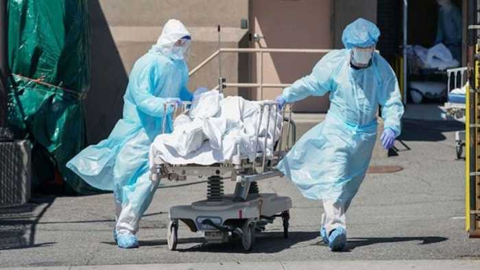 COVID-19: Cases in India cross 9,000; death toll surpasses 300