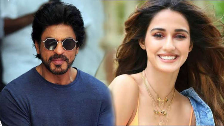 Disha Patani Wishes To Go On Coffee Date WIth Shah Rukh Khan