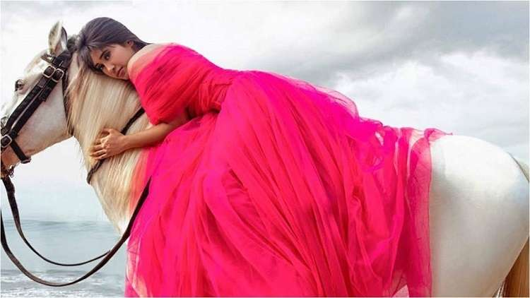 LATEST PHOTOSHOOT: Shivangi Joshi Looks Unrecognizable In Pink Gown