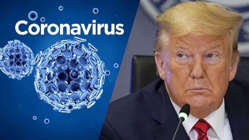 US approves anti-malarial drug to treat coronavirus: Trump
