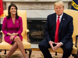 Nikki Haley on Trump