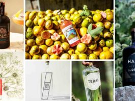 6 Indigenous Indian Gins