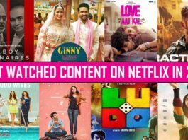 Here's What Indians Watched The Most On Netflix In 2020