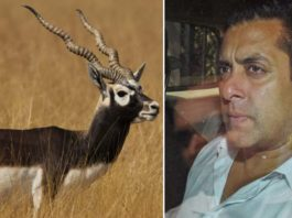Salman Khan Misses Out Yet Another Court Hearing On Blackbuck Poaching Case